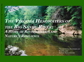 The Virginia Headwaters of the Big Sandy River: A Story of Revitalization and Nature's Resilience