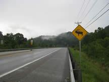Elk crossing sign along Route 15 in Eastern Kentucky.? Photo by Kari Kilgore?